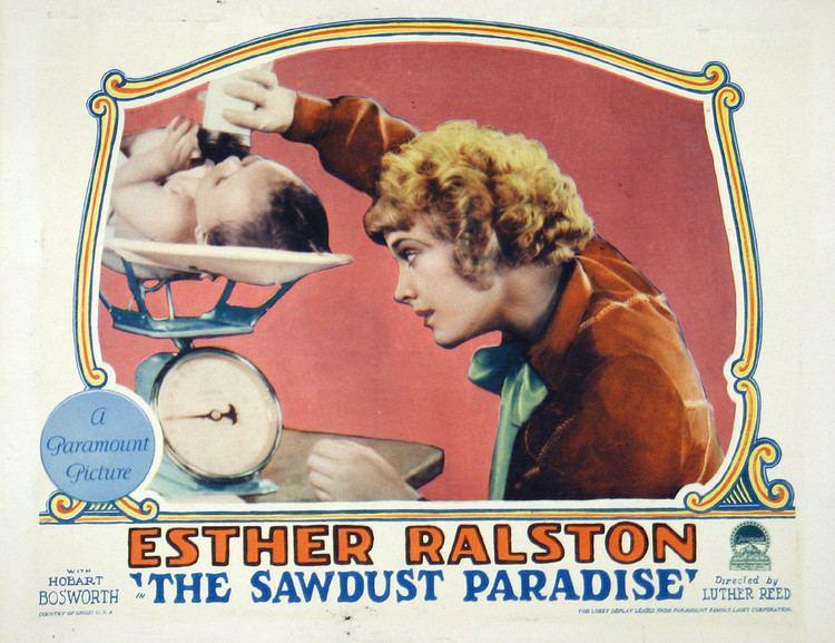 The Sawdust Paradise The Sawdust Paradise Wikipedia