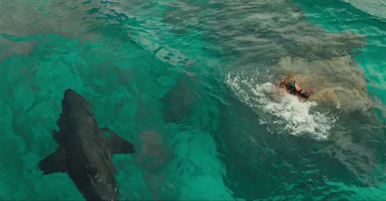 The Shallows (film) Watch the full trailer for shark thriller 39The Shallows39