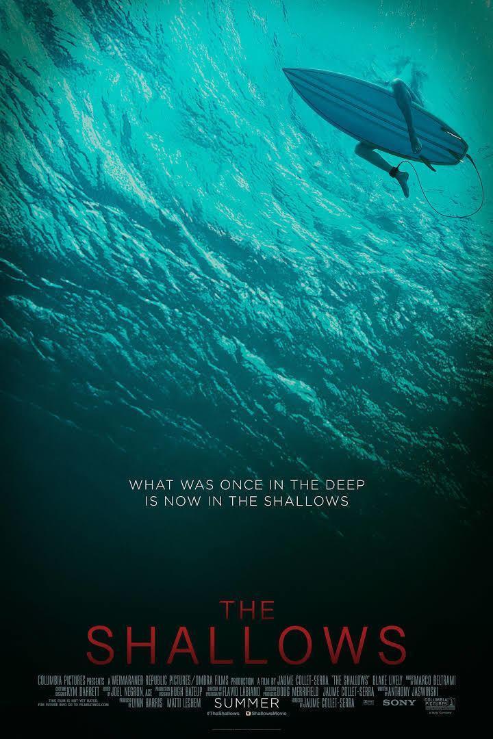 The Shallows (film) t0gstaticcomimagesqtbnANd9GcSOhJNLsS4dpZcdP