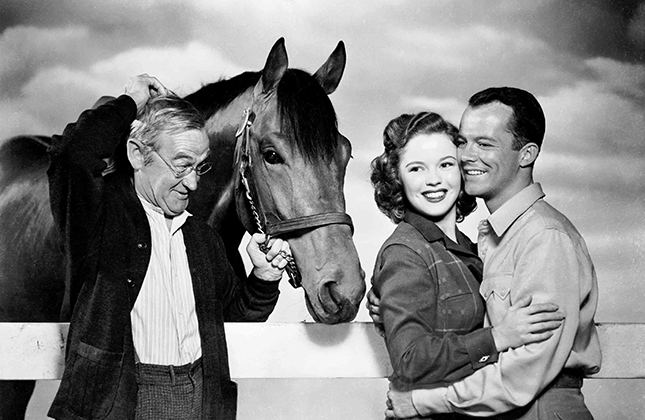 The Story of Seabiscuit The Story of Seabiscuit 1949