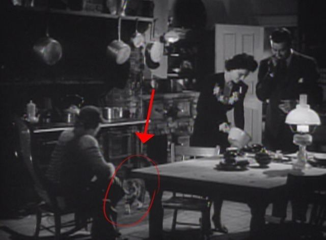 The Uninvited (1944 film) The Uninvited 1944 Cinema Cats