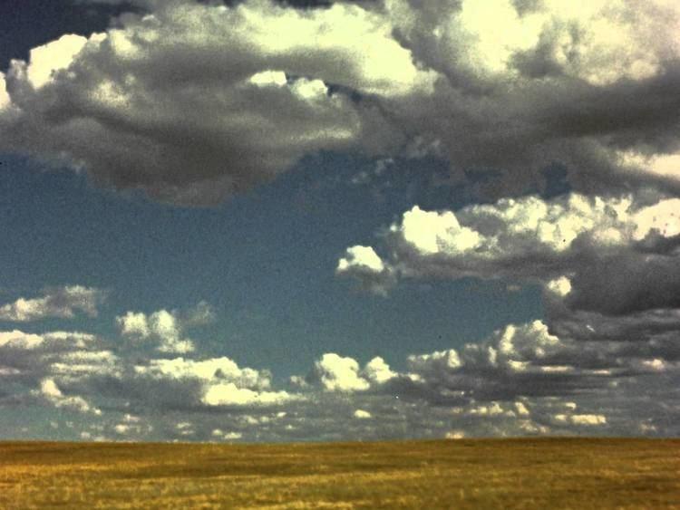 Vanishing Prairie The Trailer YouTube