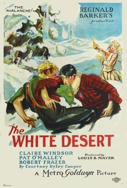The White Desert movie poster