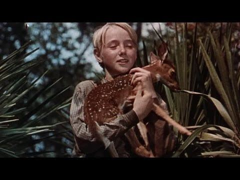 The Yearling (film) The Yearling film Alchetron The Free Social Encyclopedia