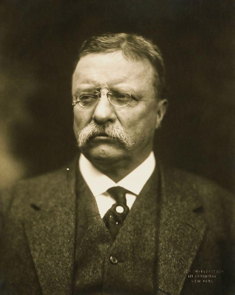 Theodore Roosevelt httpsuploadwikimediaorgwikipediacommonsee