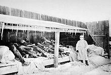 Third plague pandemic httpsuploadwikimediaorgwikipediacommonsthu