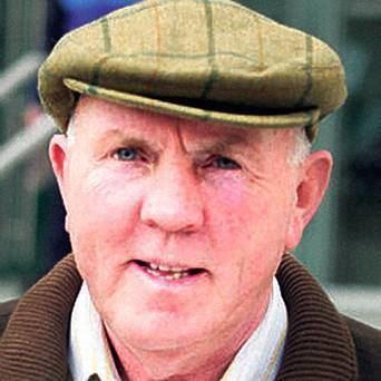 Thomas Murphy (Irish republican) Man named Thomas Murphy traded cattle worth over 150000