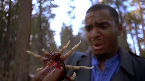 Ticks (film) Ticks 1993 Triskaidekafiles