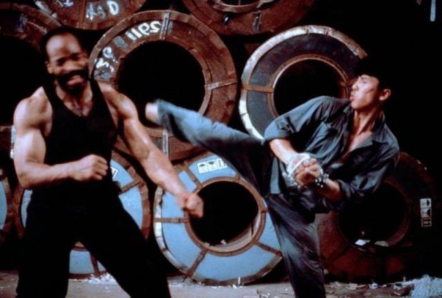Tiger Cage 2 Tiger Cage II with Donnie Yen Martial Arts Action Movies com