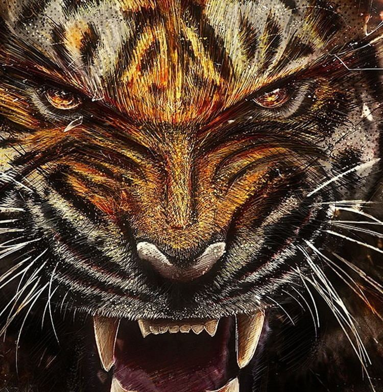Tiger Fangs HD Wallpaper 8674