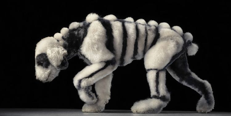Tim Flach Tim Flach Bon Expose Museum of Art and Design