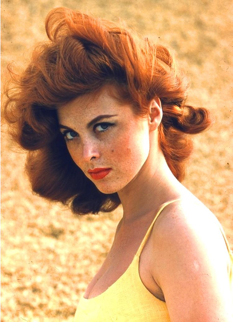 Tina Louise Tina Louise Plastic Surgery Before and After Photos