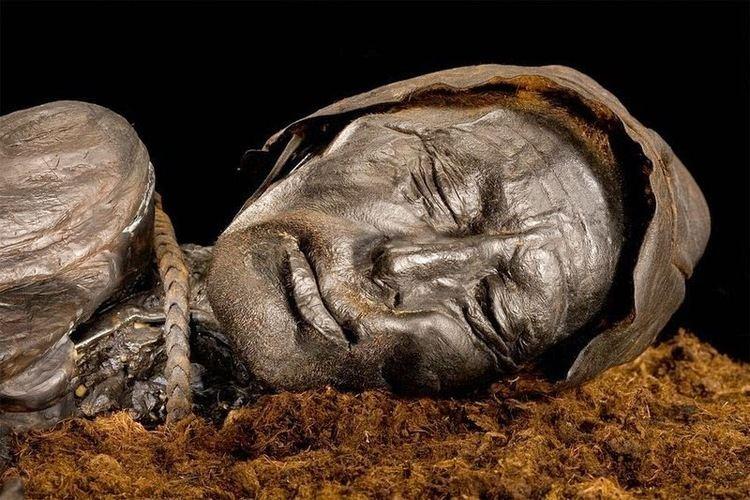Tollund Man Tollund Man The 2400 Year Old Bog Body