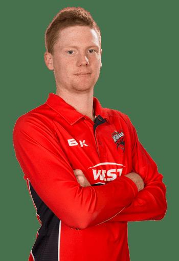 Tom Andrews (cricketer) wwwsacacomaumediaPlayersMenDomesticSARe