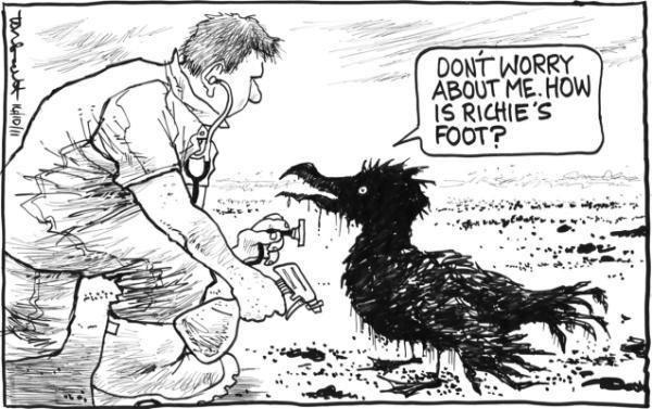 Tom Scott (cartoonist) Tom Scott cartoons comment dominionpost Stuffconz
