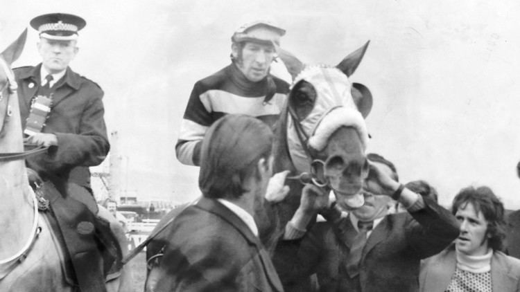 Tommy Carberry Giant of jump racing Tommy Carberry dies aged 75 Horse Racing News