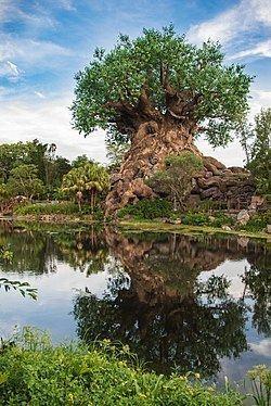Tree of Life (Disney) httpsuploadwikimediaorgwikipediacommonsthu