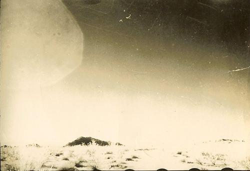 Trevor James Constable Trevor James Constable39s 1957 Amoeboid Bioform 39Critter