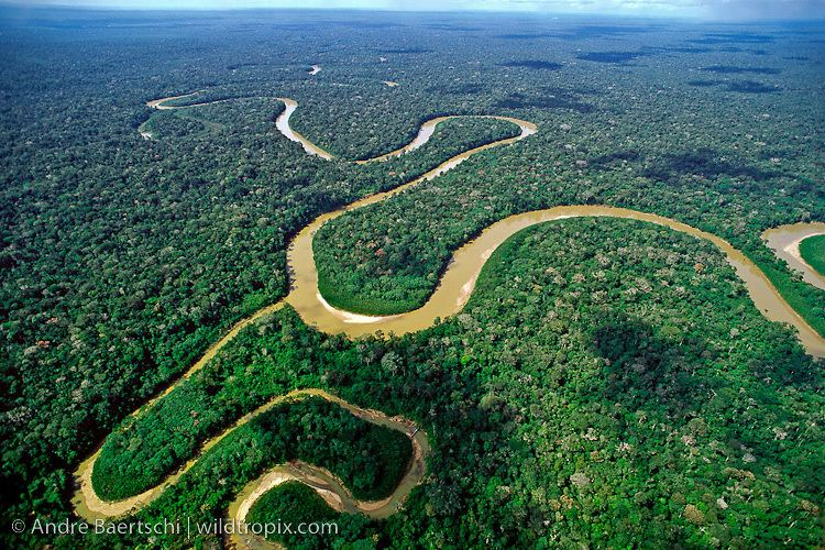 Tributary Rio Pinquen and tributary meandering through lowland tropical