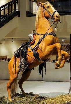 Trigger (horse) Roy Rogers39 stuffed horse Trigger sold at auction USATODAYcom