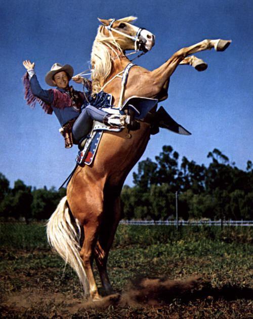 Trigger (horse) httpss3uswest2amazonawscomfindagravepr
