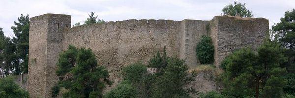 Trikala in the past, History of Trikala
