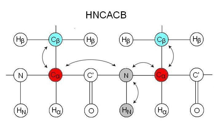 Triple-resonance nuclear magnetic resonance spectroscopy