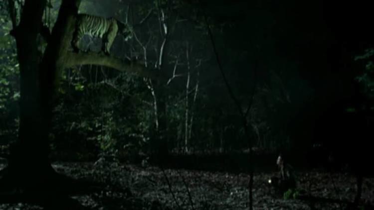 Tropical Malady Tropical Malady Apichatpong Weerasethakul YouTube