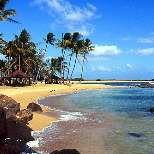Tropics The Tropics Coastal Living