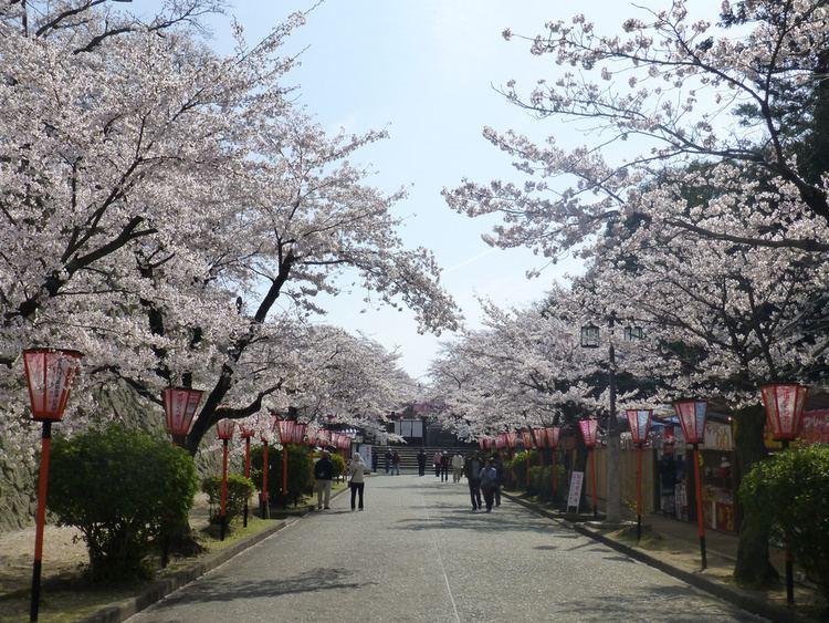 Tsuyama, Okayama Festival of Tsuyama, Okayama