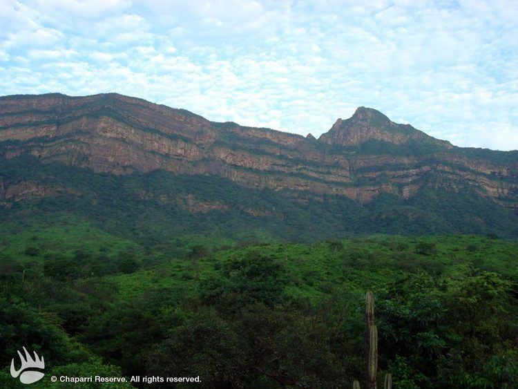 Tumbes Region Beautiful Landscapes of Tumbes Region