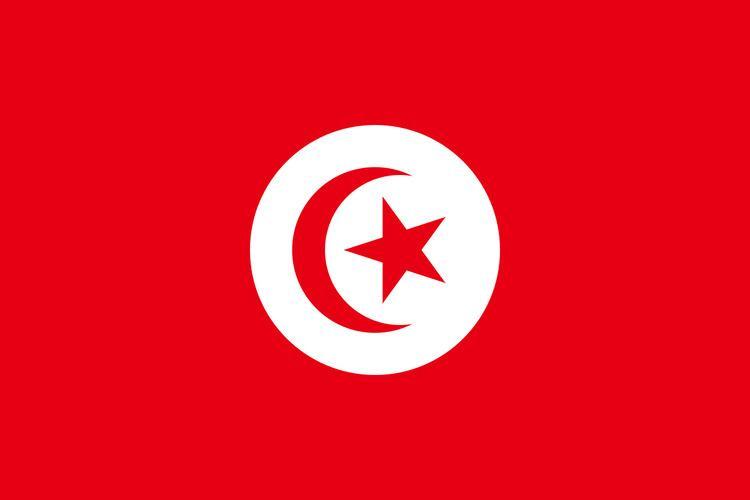 Tunisia at the 1971 Mediterranean Games