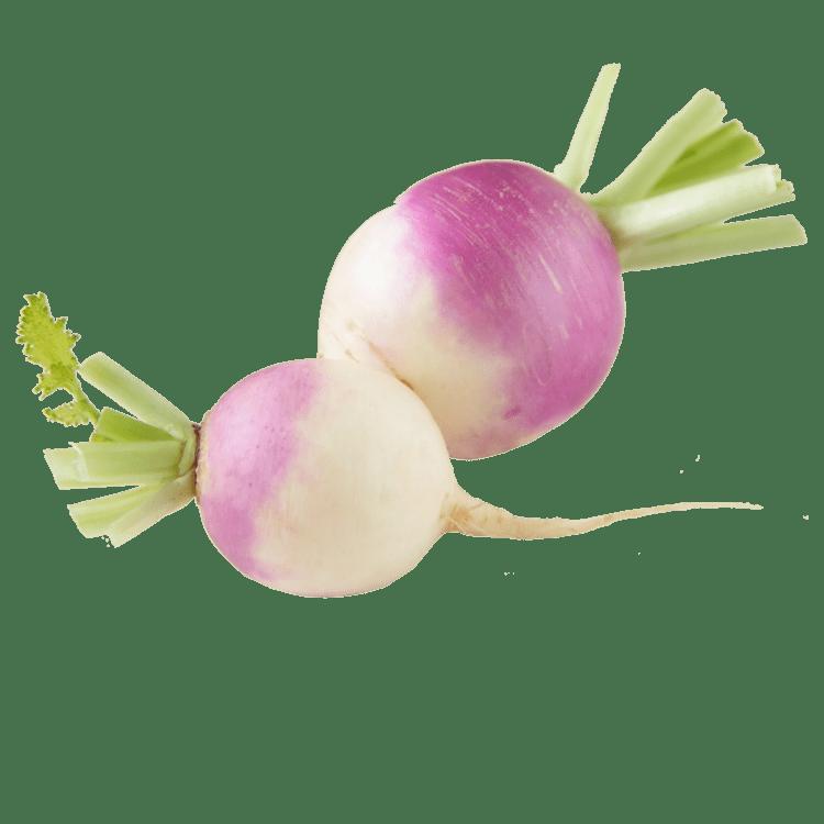 Turnip Recipe Cavatappi Mac amp Cheese with Purple Top Turnip amp Kale Blue