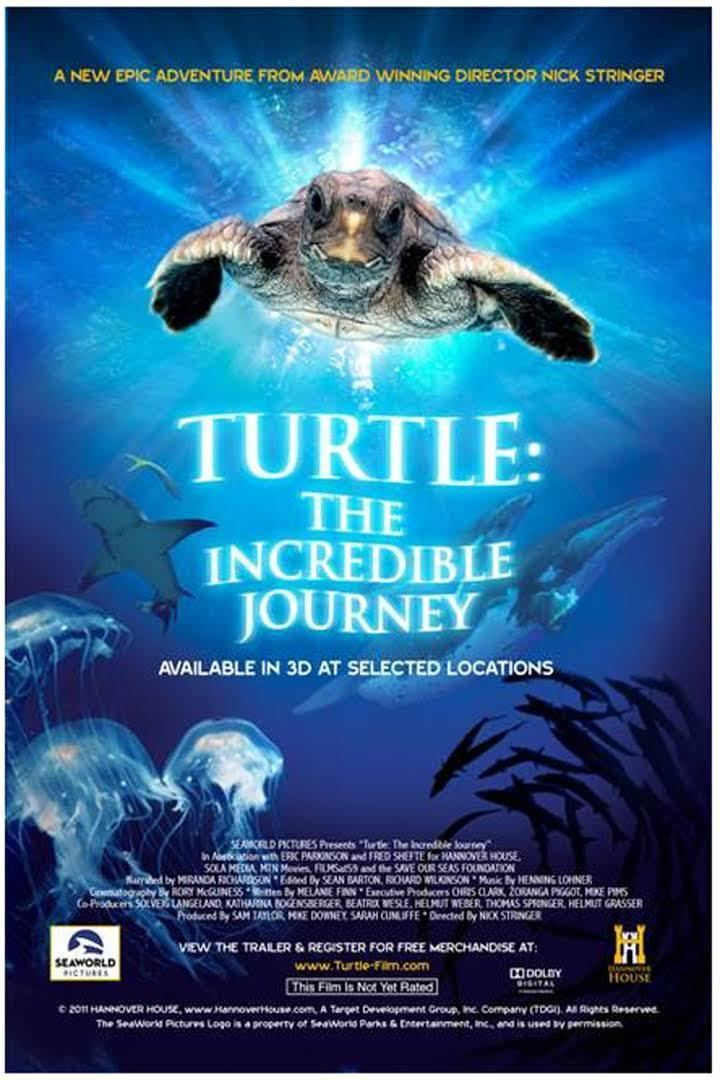 Turtle: The Incredible Journey t2gstaticcomimagesqtbnANd9GcSKyhB7tnAFjTLTZm