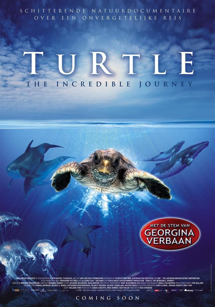 Turtle: The Incredible Journey Turtle The Incredible Journey 2009 Posters of Animal Films