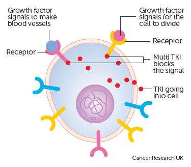 tyrosine kinase inhibitor cancer growth blockers cancer research uk