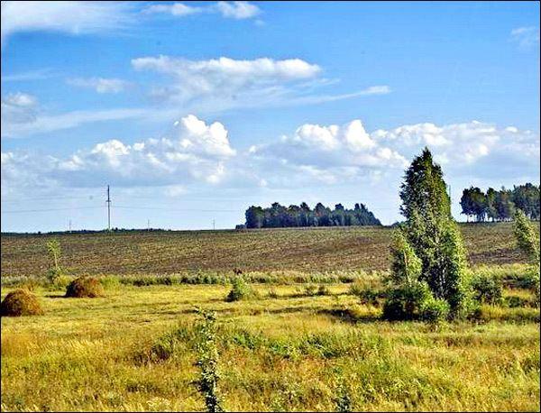 Tyumen Beautiful Landscapes of Tyumen