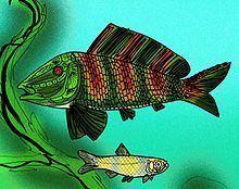 Uarbryichthys httpsuploadwikimediaorgwikipediacommonsthu