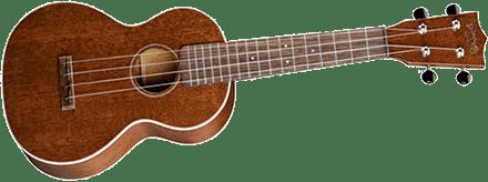 Ukulele How to Play The Ukulele