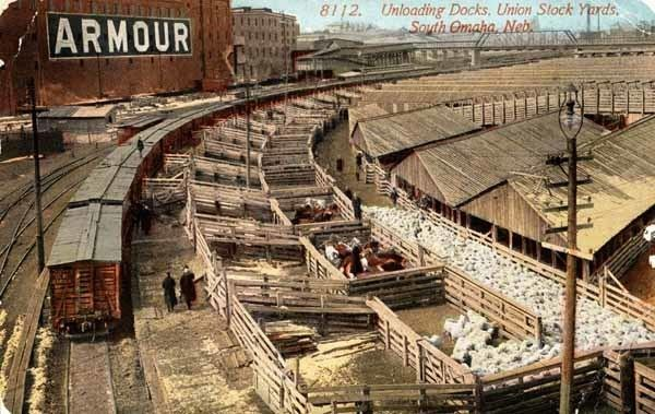 Union Stock Yards 1000 images about Chicago Union Stockyards on Pinterest Cattle
