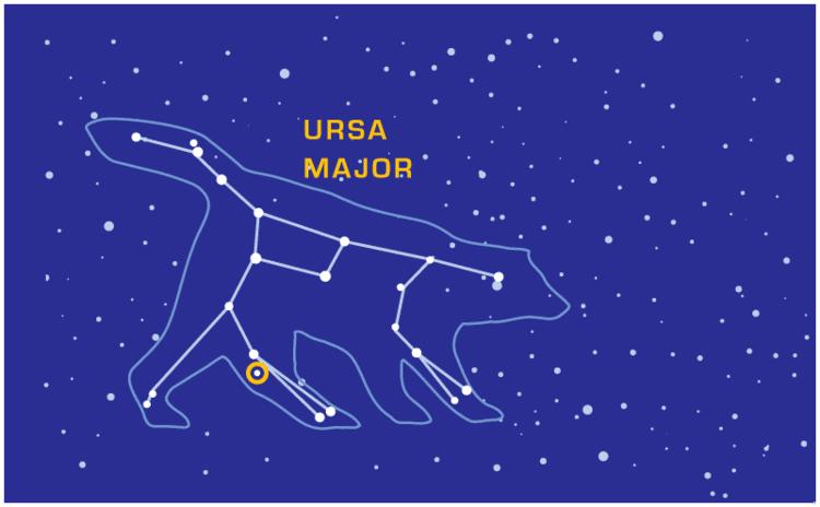 Ursa Major Ursa Major Venngage Free Infographic Maker