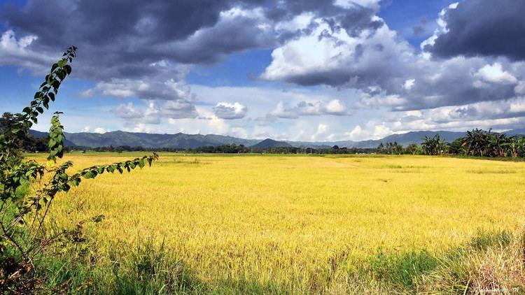 Valencia, Bukidnon Beautiful Landscapes of Valencia, Bukidnon