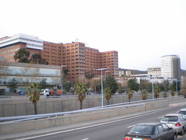 Vall d'Hebron University Hospital