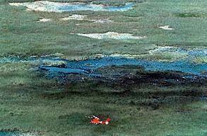 ValuJet Flight 592 ValuJet Flight 592 Crashes Into The Florida Everglades Killing 110