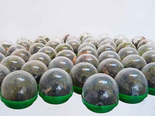 Vaughn Bell Environmental Art at Swarm Gallery San Francisco Inhabitat