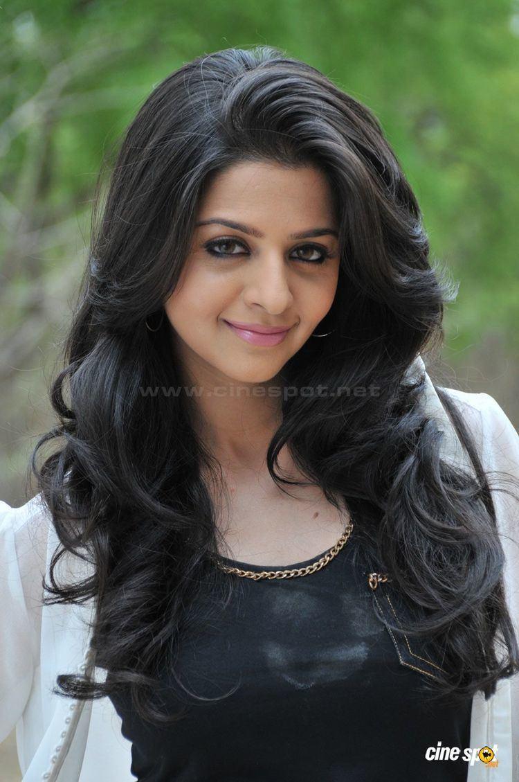 Vedhika Vedhika Actress Photos