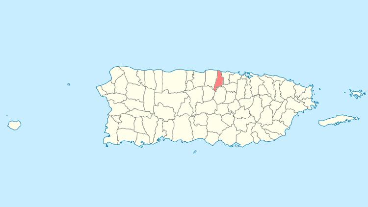 Vega Baja, Puerto Rico Festival of Vega Baja, Puerto Rico