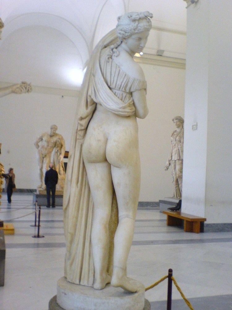 Venus Callipyge httpsuploadwikimediaorgwikipediacommons33