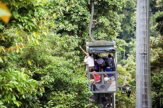 Veragua Veragua Rainforest Park Puerto Limon Costa Rica Top Tips Before