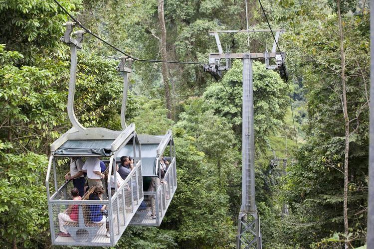 Veragua Shore Excursion Veragua Rainforest Tram amp Trails Limon Costa Rica